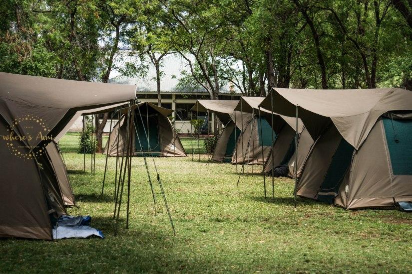campsite (1 of 1)